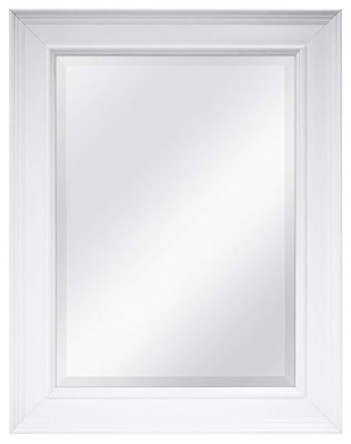 1. MCS 20450 15.5x21.5'' Wall Bathroom Mirror