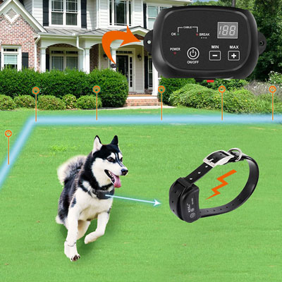 8. COVONO KD660B Electric Dog Fence System