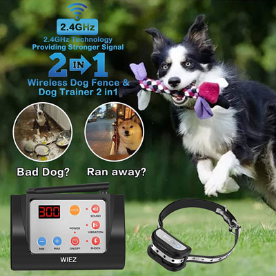 4. WIEZ Fence Wireless & Training Collar